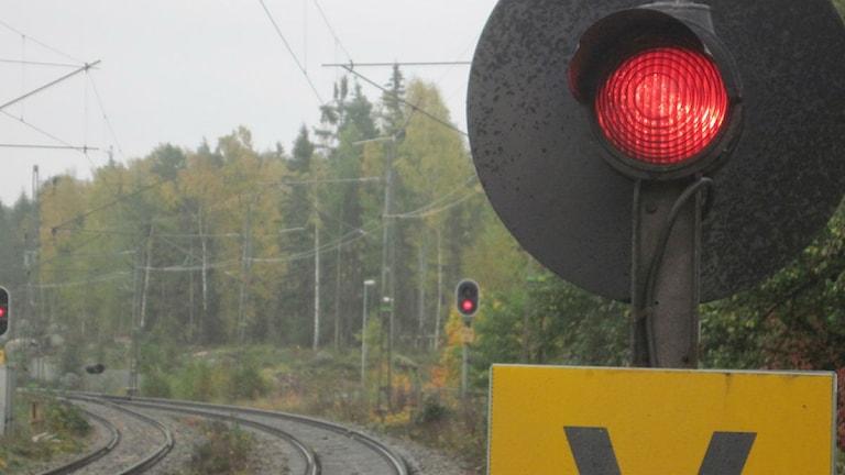 Foto: Hasse Altbark/Sveriges Radio