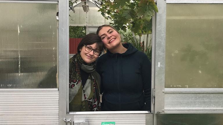 Mimmi Davidsson och Johanna Järnberg står i ett växthus.