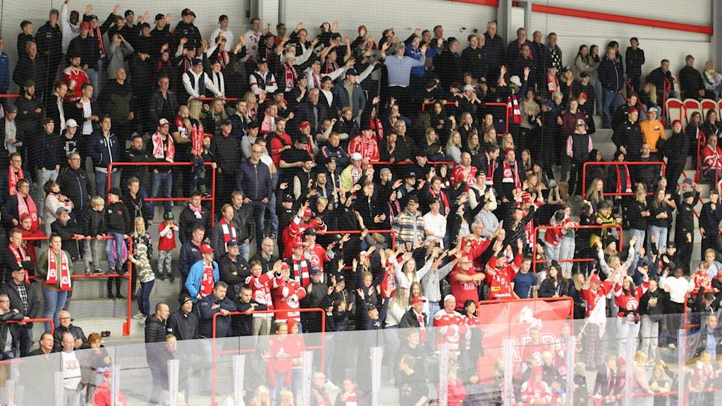 Publiken i Ljungby Arena