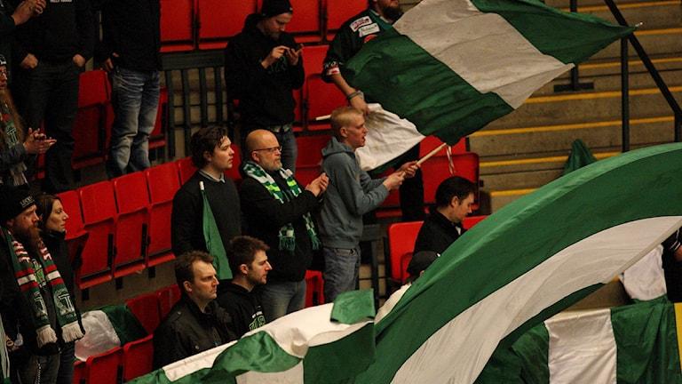 Tingsryds klack Gröna Brigaden på matchen mellan Vita Hästen och Tingsryd. Foto: Fredrik Lindgren/Pic-agency.com