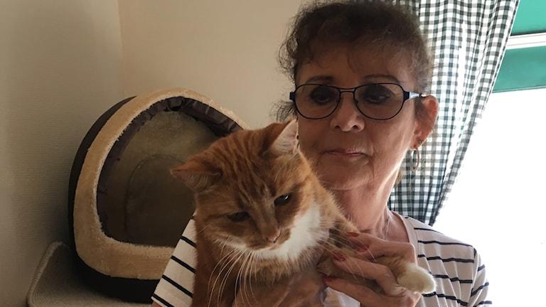 Rose-Marie Andersson, ordförande i Djurens Vänner med en av katterna på katthemmet.