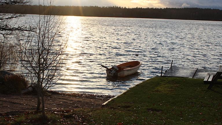 Helgö i skymningsljus. Vackert, men under marken döljer sig gamla utsläpp. Foto: Karin Ernsson/ Sveriges Radio