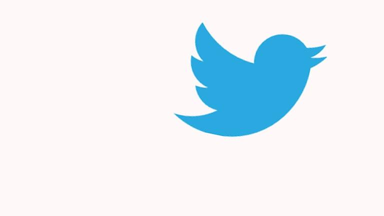 Twitterfågeln. Foto: Wikimedia Commons