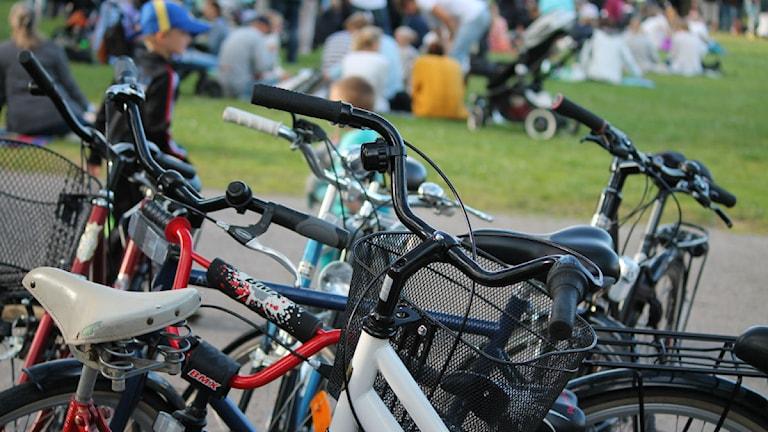 Flera cyklar står uppställda.