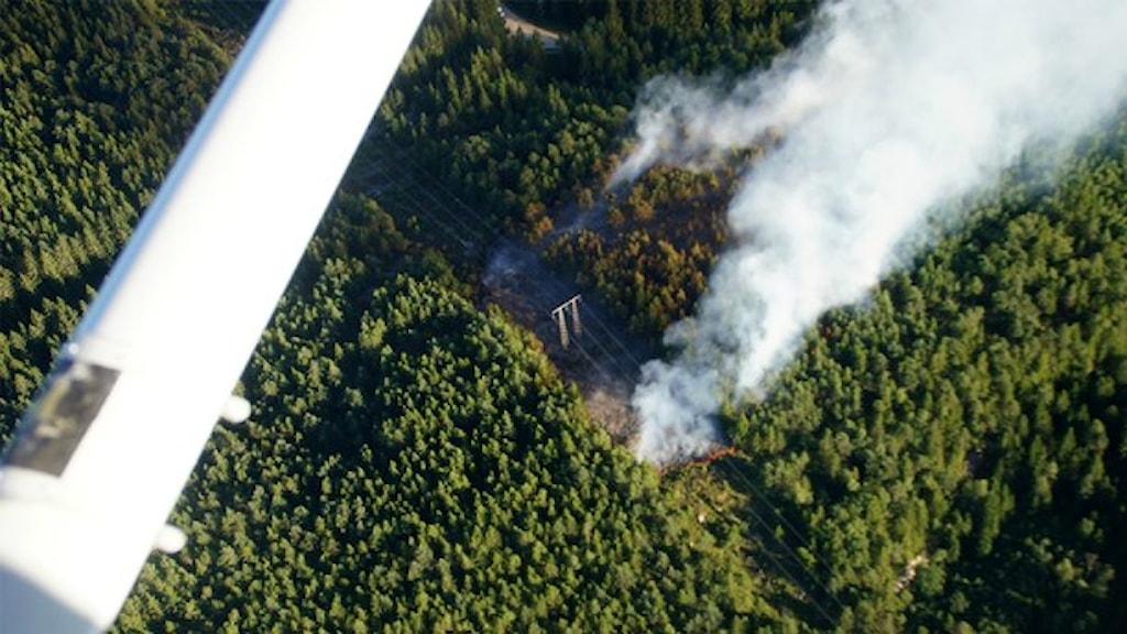 En skogsbrand kan upptäckas från ett brandflyg. Foto: Frivilliga flygkåren/Handout/TT Bild