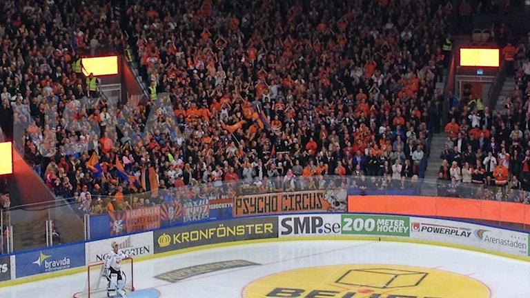 Publiken i SHL-premiären mellan Växjö Lakers och HV71. Foto: Anna Tigerström/Sveriges Radio