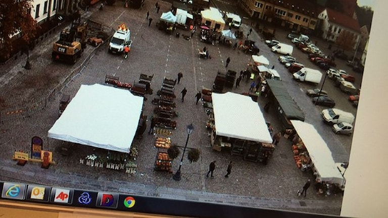 Det här visar en av webbkamerorna på en hemsida. Foto: Lena Gustavsson/Sveriges Radio