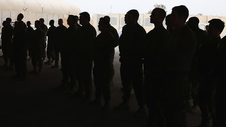 Ett gäng militärer i tjänst. Foto: TT
