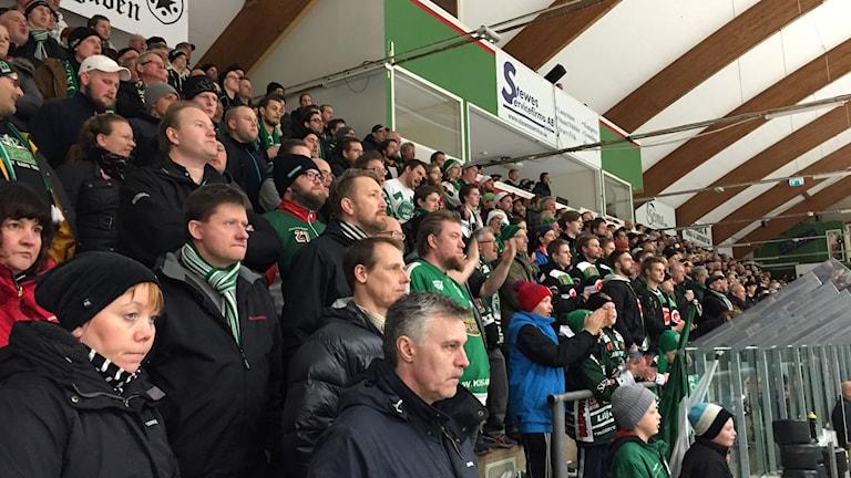 Tingsryds supporterklack Gröna brigaden. Foto: Janne Gunnarsson/Sveriges Radio