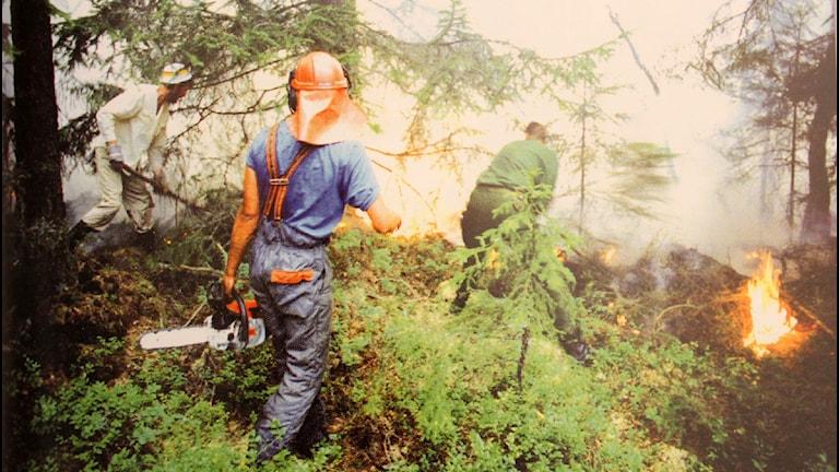 """En bild av räddningsarbetet vid Lilla Enön. Bilden är publicerad i boken """"Den stora branden å¨Vakö myr 1992"""" utgiven av Hököns Intresseförening  Foto: Lars Brundin"""