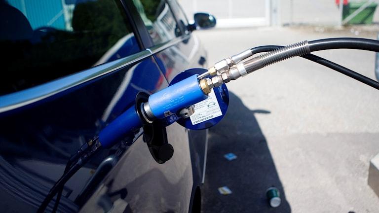Biogastankning. Foto: Andreas Apell/TT
