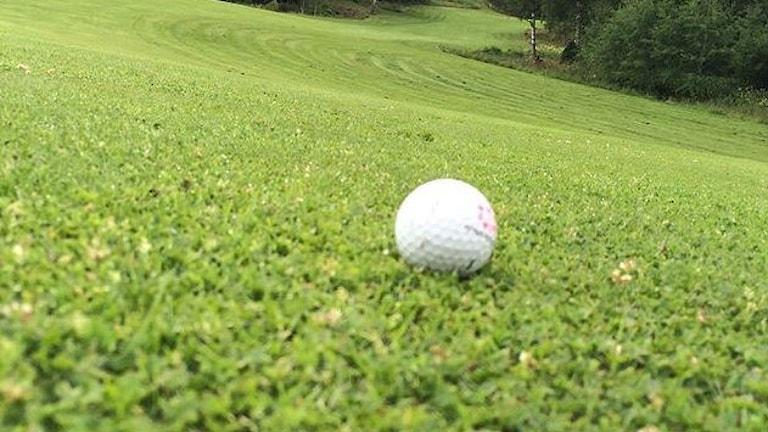 "P4 Sommar spelar golf. Foto: Mathias ""Balesteros"" Lindholm."