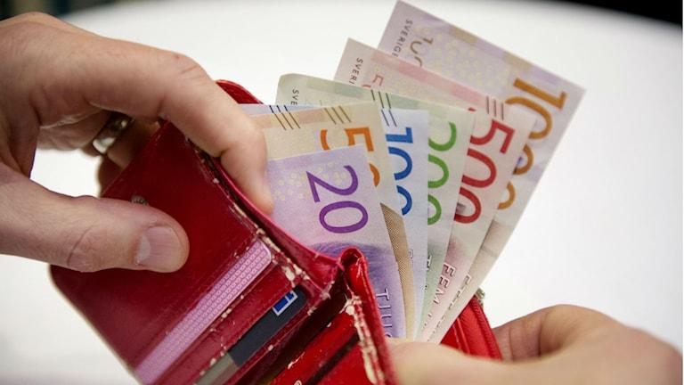 Sveriges nya sedlar. Foto: Jessica Gow/TT