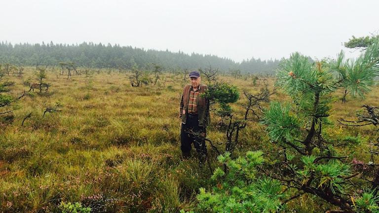 Kjell Skoog står på myren som han gödslat med träaska.