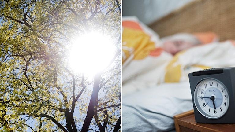 En kvinna sover och en sol lyser över ett träd.