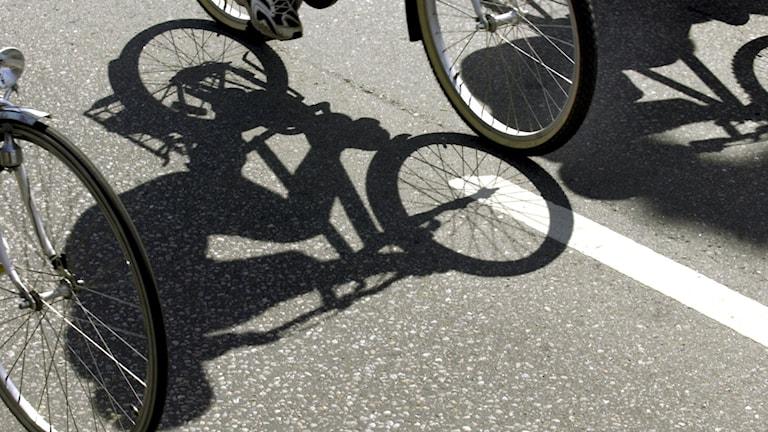 Sihouette på flera cyklar