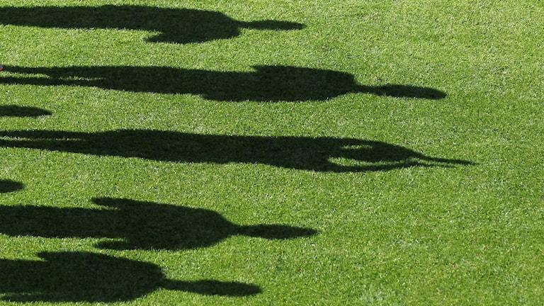 Skuggor på fotbollsplan