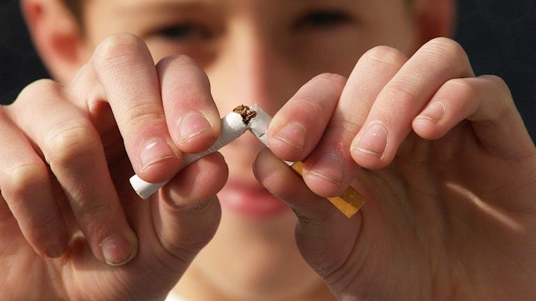 En pojke bryter av en cigarett. Fokus ligger på cigaretten.