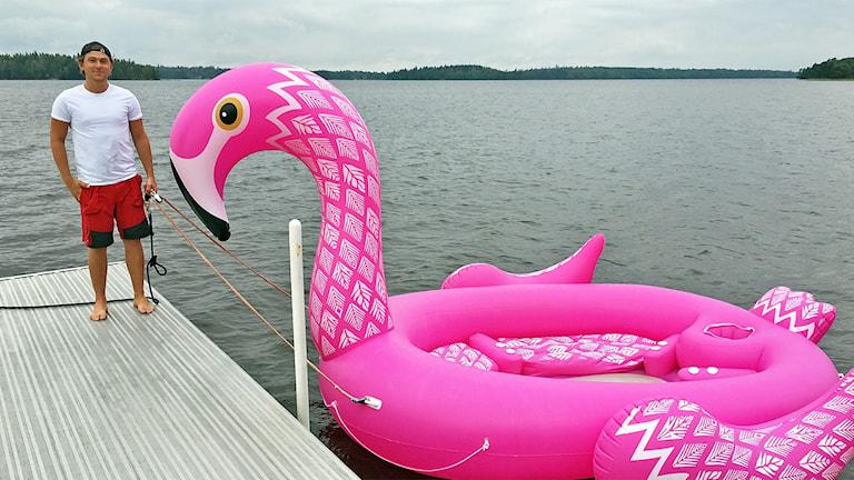 Hampus Håkansson och hans flamingo