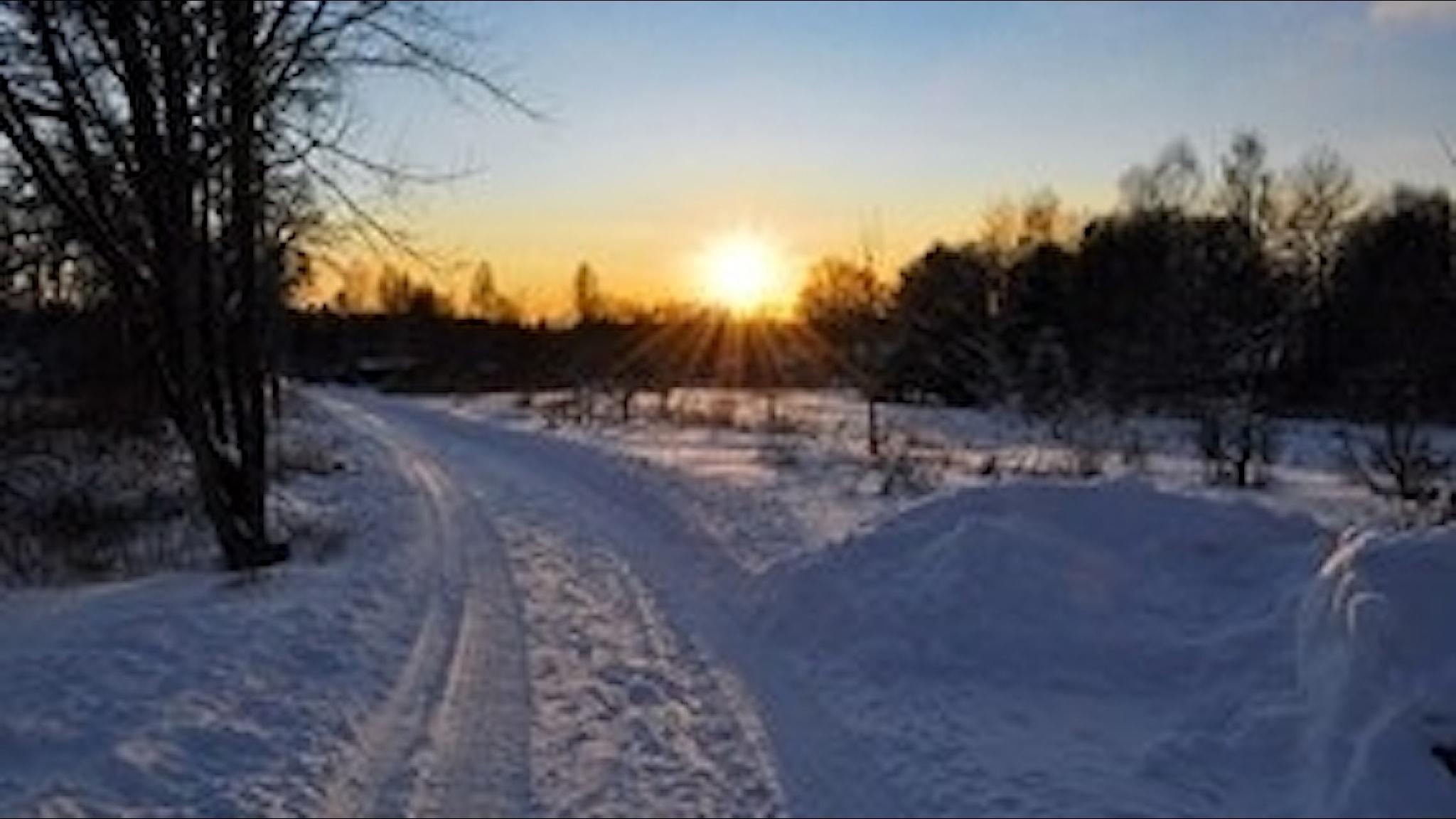 Soluppgång en vintermorgon.