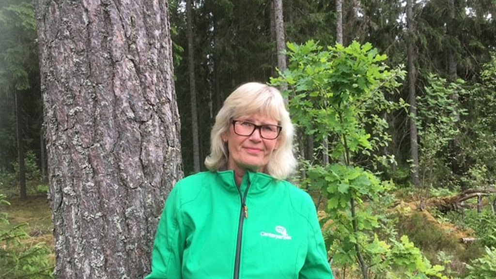 Uppvidinge Centerpartiet Ingrid Hugosson
