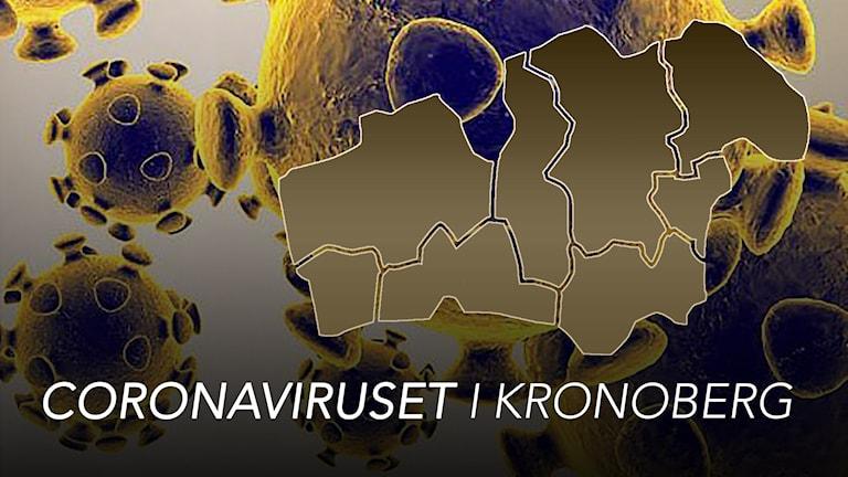 Ett virus och grafik över Kronobergs kommuner.