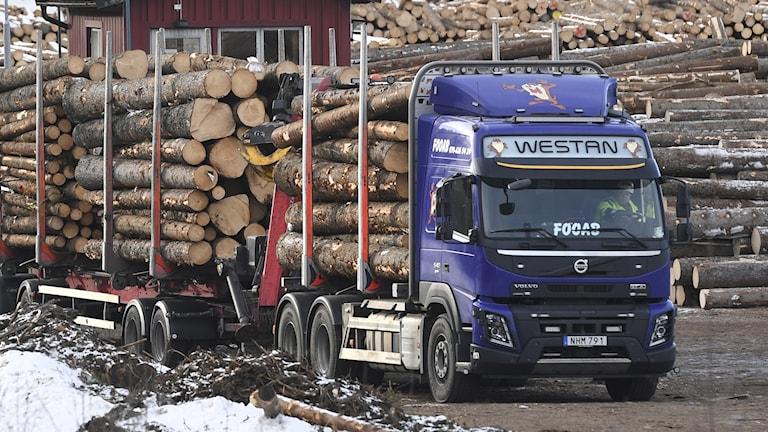 Timmerbil vid sågverk.