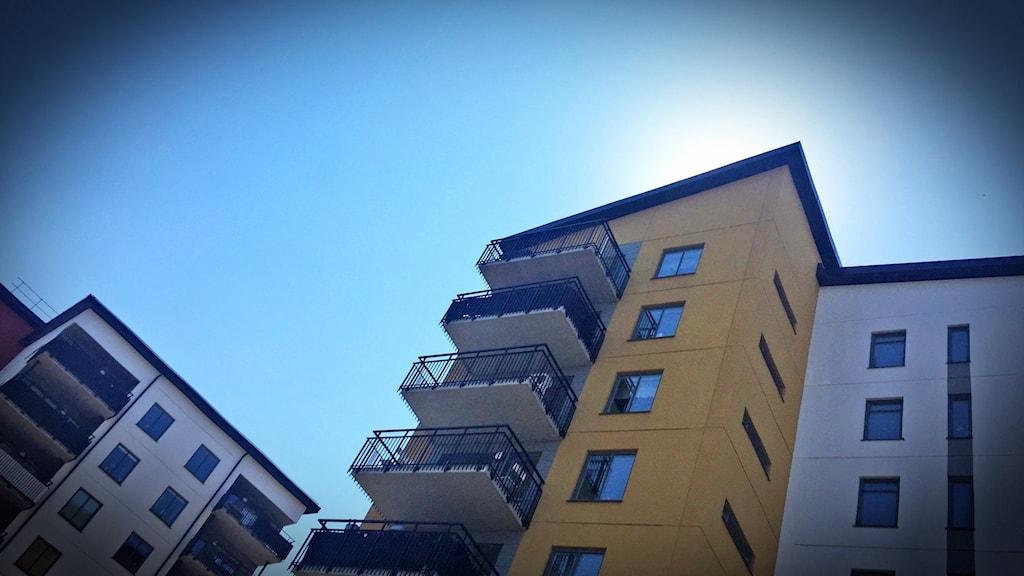 Hyreshus som svarta silhuetter mot en skymd sol.