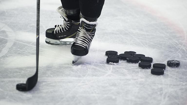 hockeyprofil
