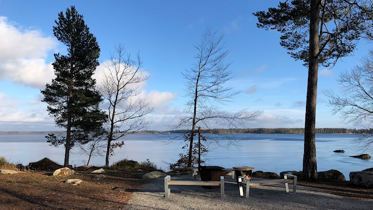 Naturen i Åsnens nationalpark