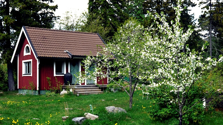 En sommarstuga i en blommande trädgård.