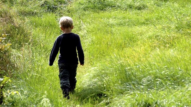 En pojke går på en äng
