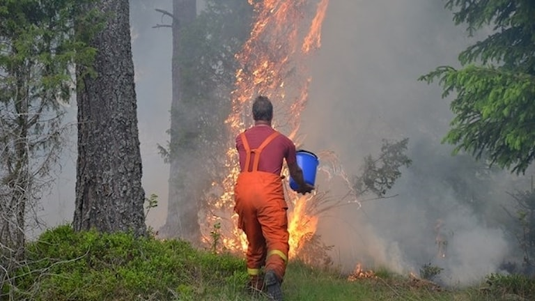 Branden norr om Målerås.