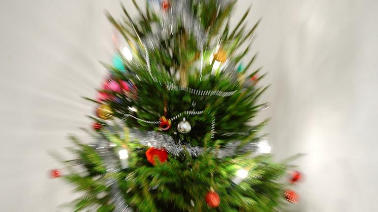 Bild på en suddig julgran.