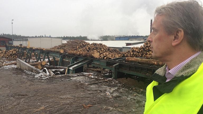 I bild Jonas Sandborg som tittar på stockarna som ska sågas upp
