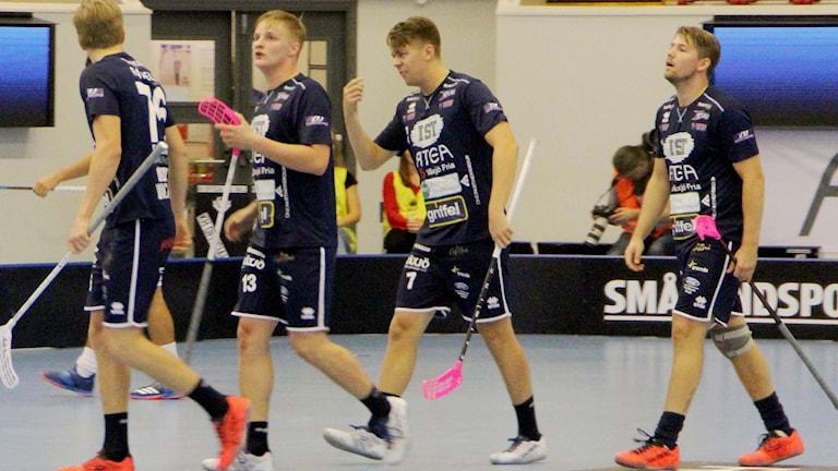 Växjö Vipers 2018/2019 depp
