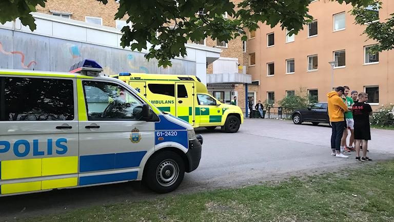 Vinbrännboll, knivdåd Ljungby, polis