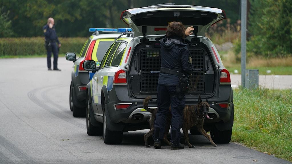 Polisens hundförare undersöker brottsplatsen.