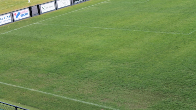 Lagavallens gräs