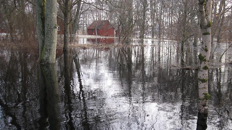 Översvämning i Ryssby.