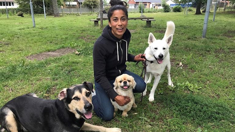 Etolog och hundpsykolog Caroline Alupo sitter med tre hundar.