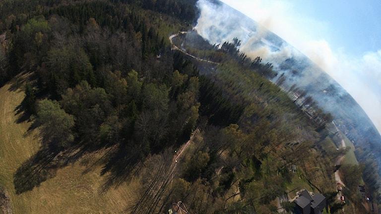 En bild uppifrån på skog och rök