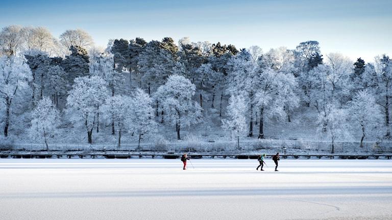 ett vinterland