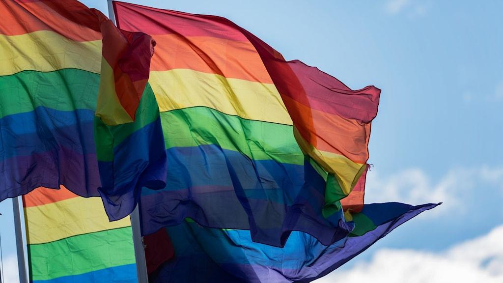 en flagga med regnbågens färger