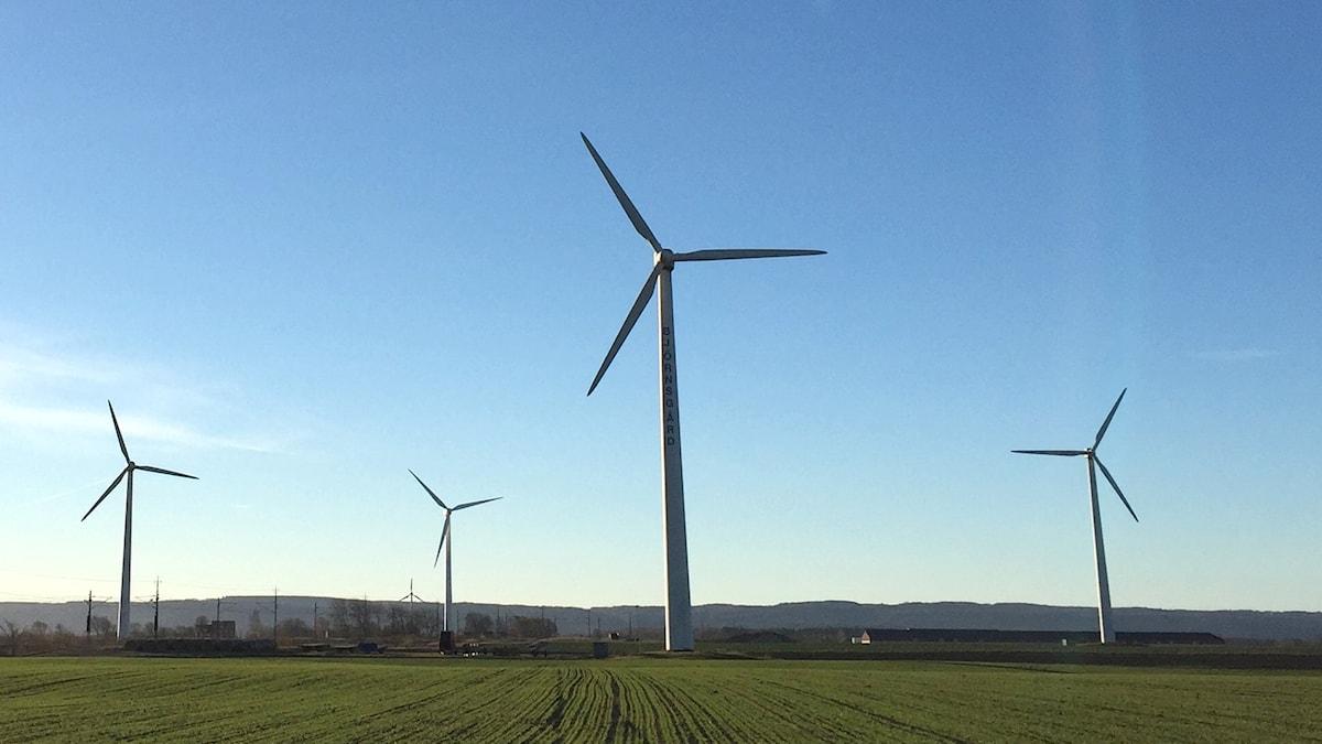 Fyra vindkraftverk i Laholm