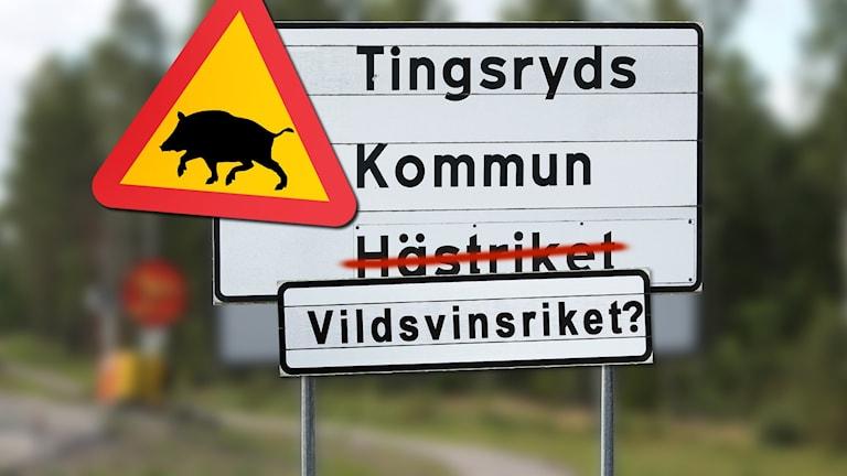 """Kollage: Skylt med texten """"Tingsryds kommun – vildsvinsriket""""."""