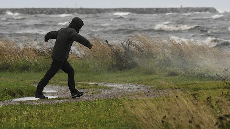 Nu drabbar norska ovädret Sverige