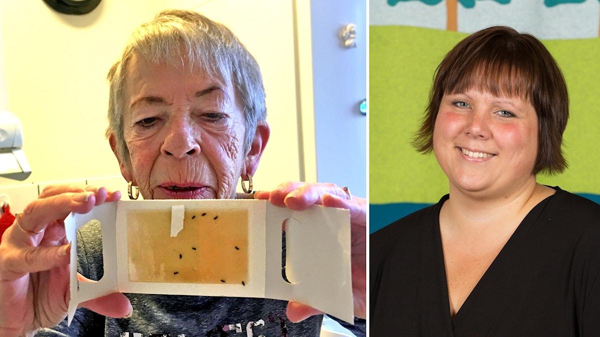 Till vänster, Ebon Olausson visar upp plattbaggarna och till höger Eva Ballovarre (S)