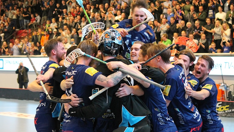 Växjö Vipers firar