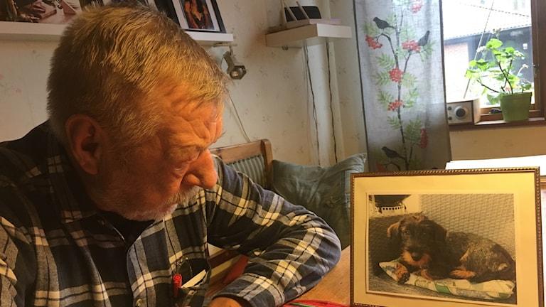 På bilden finns ett foto på hunden Kajsa som nu är död. Sven sitter bredvid och sörjer Kajsa.